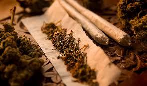 На фото: табак
