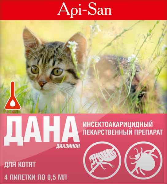 На фото: Дана для котов